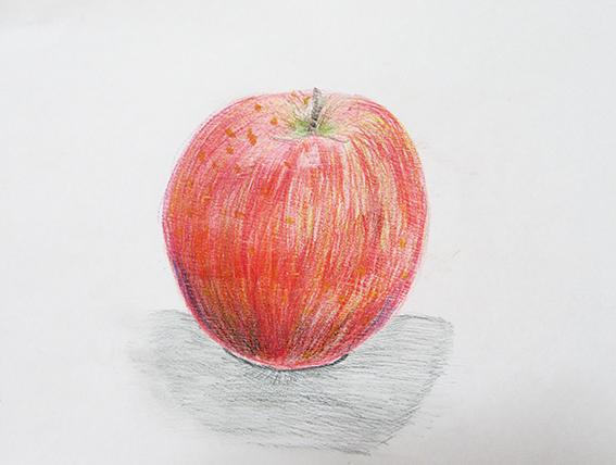 りんご 色鉛筆デッサン